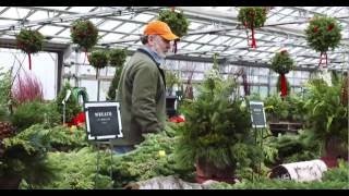 Mahoney's Garden Center Holiday TV Commercial