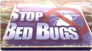 Bed Bug Spraying in Arden-Arcade CA 916-226-4836 Free Bed Bug Inspection
