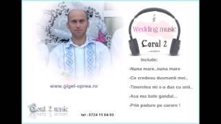 Colaj mix anii 2000 - hore si sarbe de joc - Gigel Oprea (Coral 2).