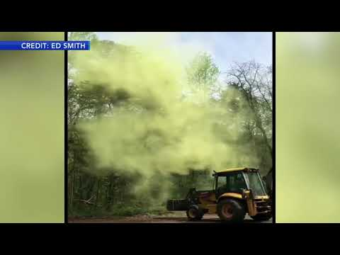 Rich Kaminski - Allergy Season - The Pollen Is Bad In New Jersey