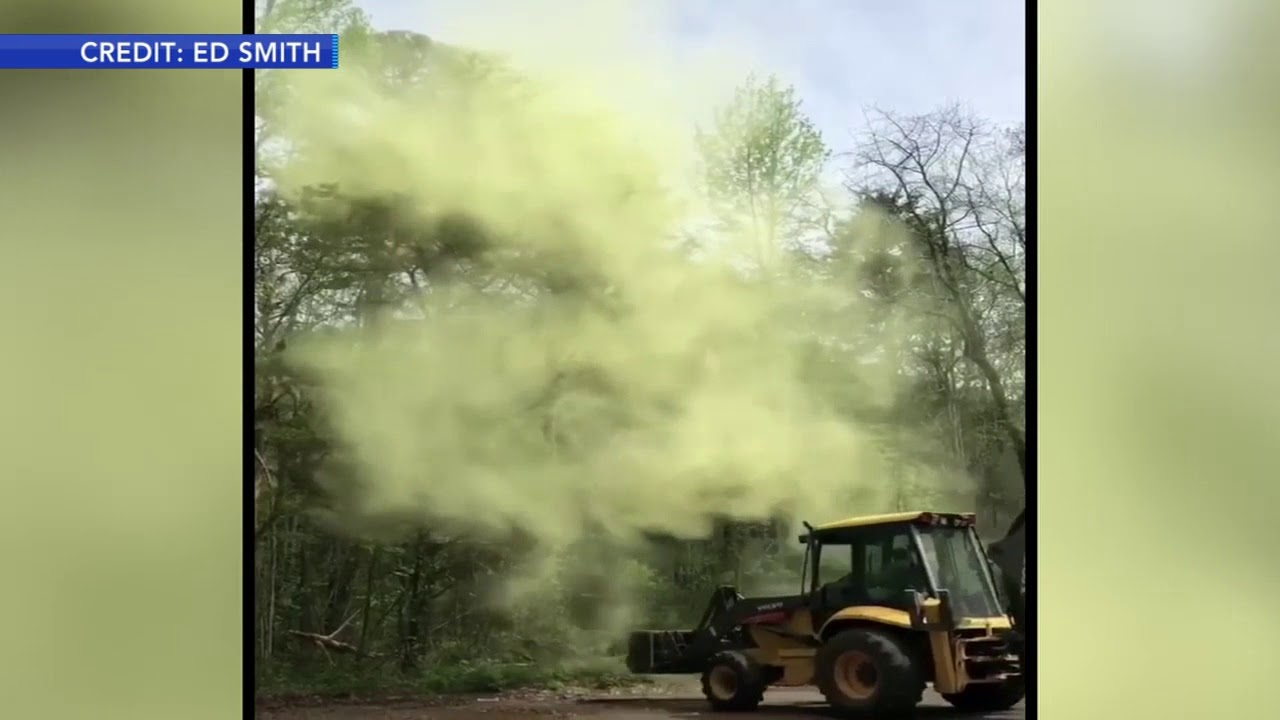 Pollen bomb after digger hits tree in Millville, New Jersey