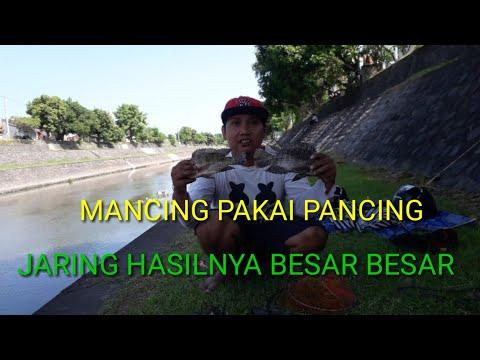 MANCING PAKAI PANCING JARING DAPET NILA BESAR-BESAR..??!!!