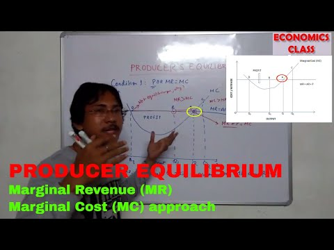 Producer equilibrium in hindi   Marginal Revenue Marginal Cost Approach   Class 12 Economics  notes