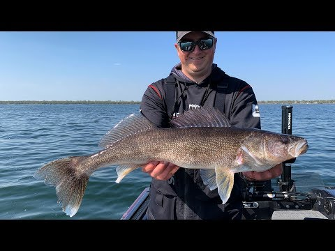 Tips For Fishing Post Spawn Walleye On Mille Lacs Lake - Go Angling E3