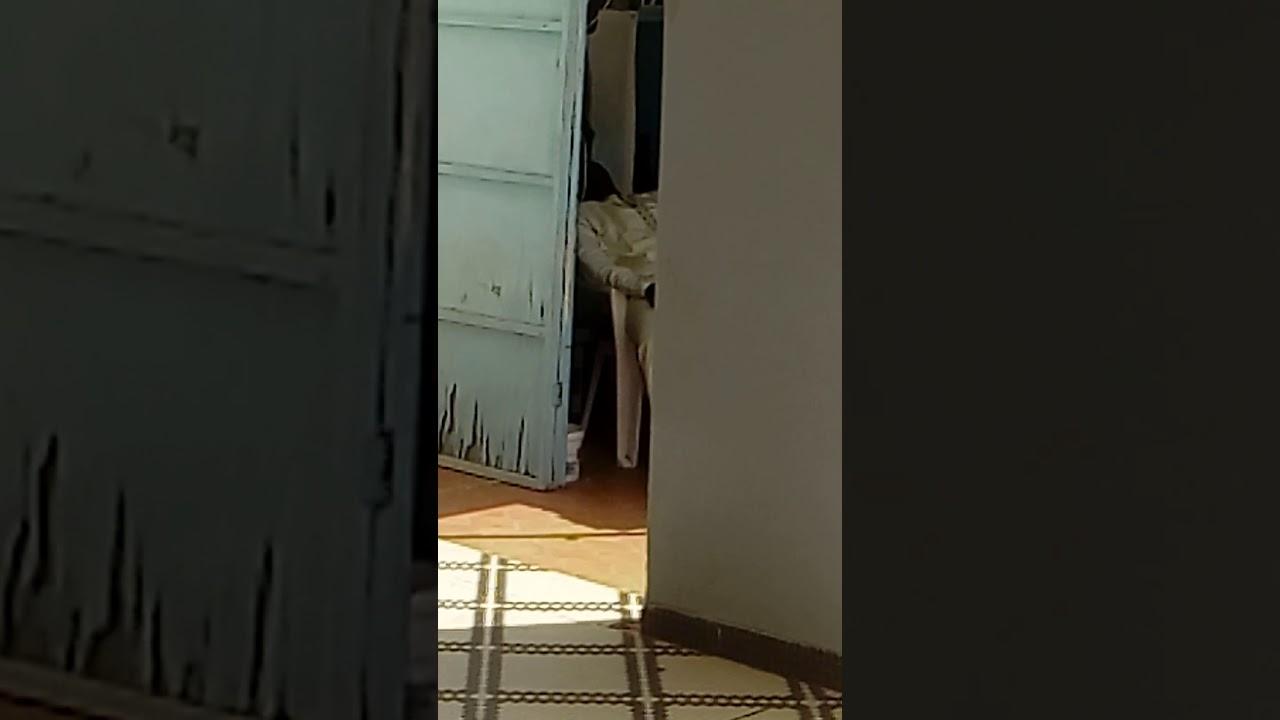 DARAY KAMIL EBOOK