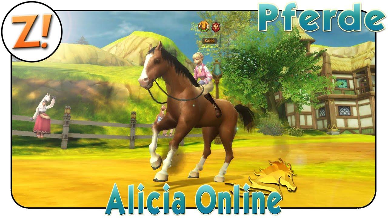 pferdekauf online