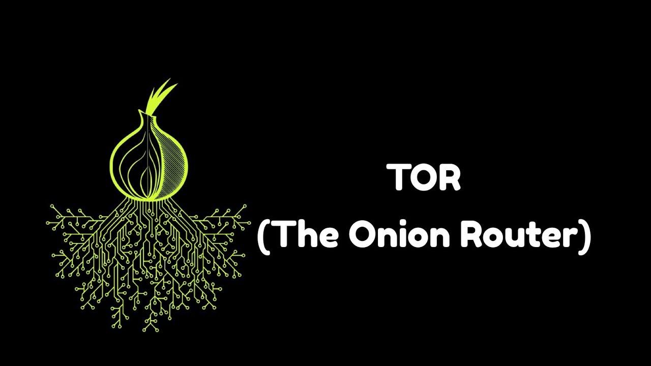 Tor darknet onion маленькая скорость в тор браузере