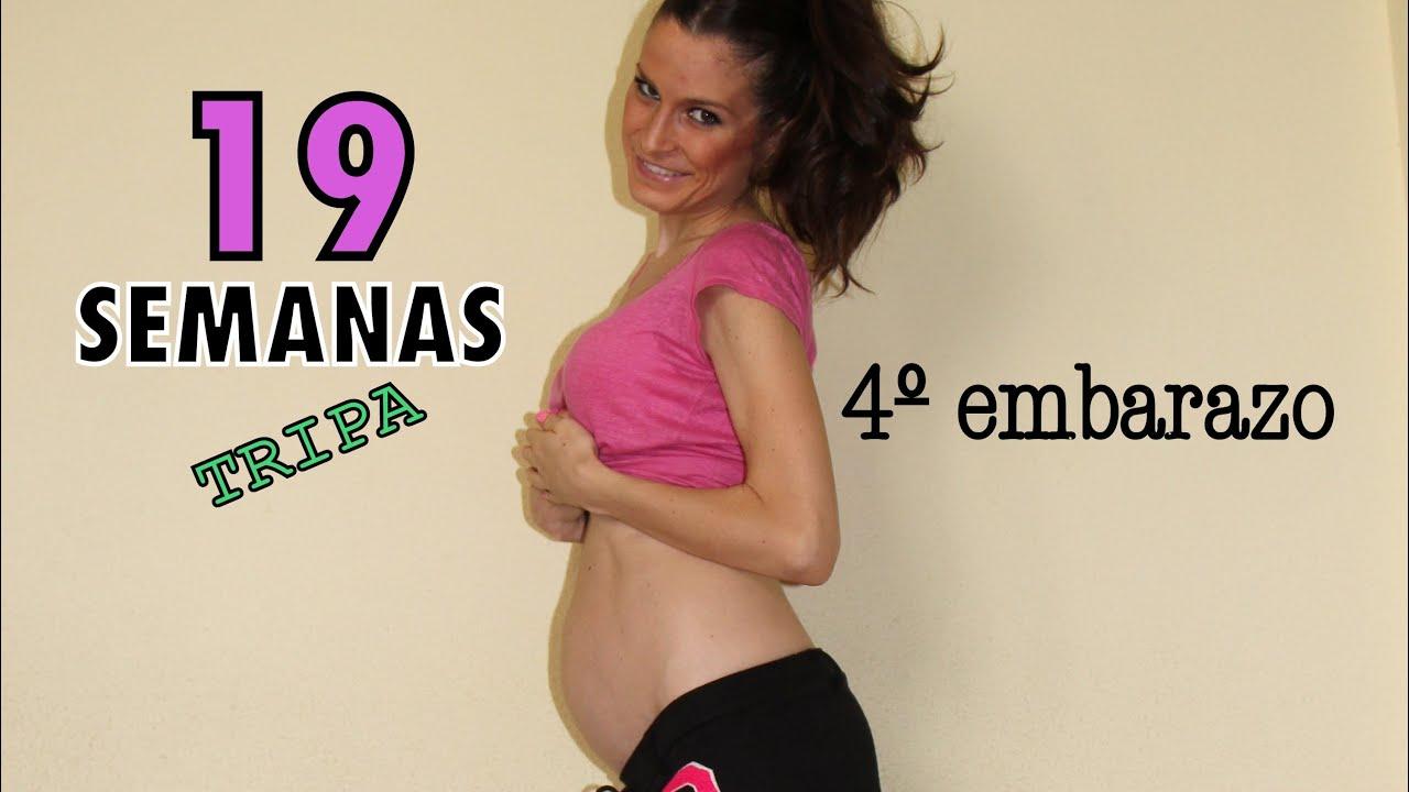 cuanto mide la panza de 19 semanas de embarazo