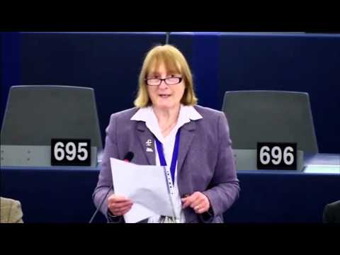 EU investment in political control - Julia Reid MEP