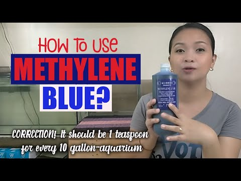HOW TO USE METHYLENE BLUE FOR FISH