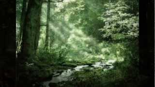 F.Schubert - Die liebe Farbe. Г. Виноградов - Ф. Шуберт - Любимый цвет