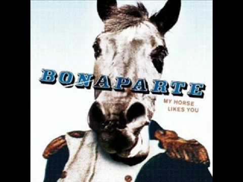 Bonaparte - Fly a plane into me  (LYRICS)