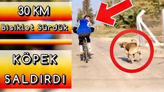 YOLDA KÖPEK SALDIRDI | 30 KM BİSİKLET SÜRDÜK | Göztepe-Güzelbahçe Vlog
