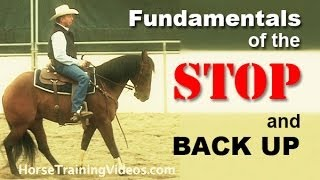 How to Train a Horse to Stop & Back Up - Basics of sliding stop for reining or cutting