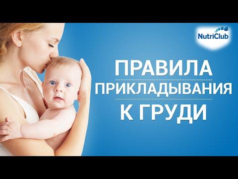 Как правильно прикладывать малыша к груди?