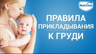 Как правильно прикладывать малыша к груди?(16+ Это видео научит вас технике кормления, которая сделает процесс грудного вскармливания приятным для..., 2012-11-02T10:01:35.000Z)