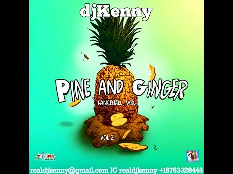 DJ KENNY PINE AND GINGER DANCEHALL MIX VOL 2. DEC 2017
