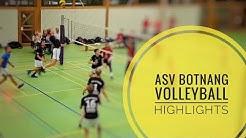 ASV Botnang Volleyball - Starke Angriffe und Blocks!