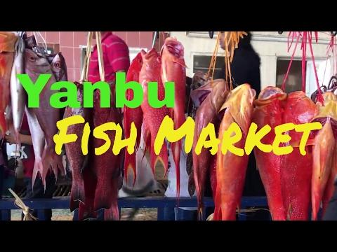 Yanbu City Fish Market Vlog 05 | TipToe Travels