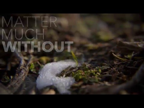 The Weather by Built to Spill – Student Lyric Video
