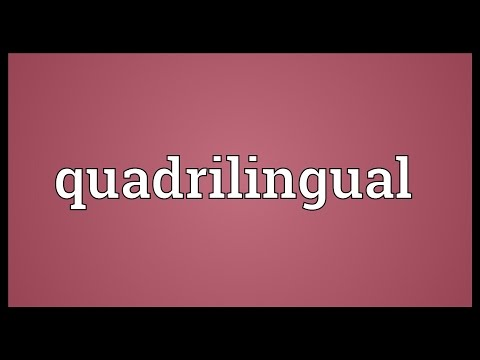 Header of quadrilingual