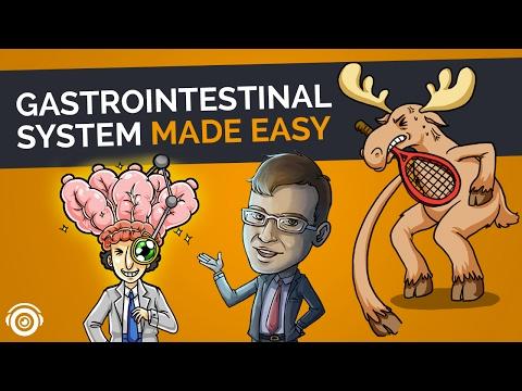 The Gastrointestinal System | Picmonic Nursing Webinar