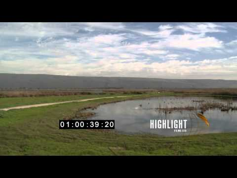 Stock Footage Of Hula Valley, Northern Israel