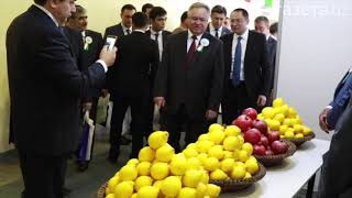 Выставка национальной продукции Таджикистана открылась в Ташкенте