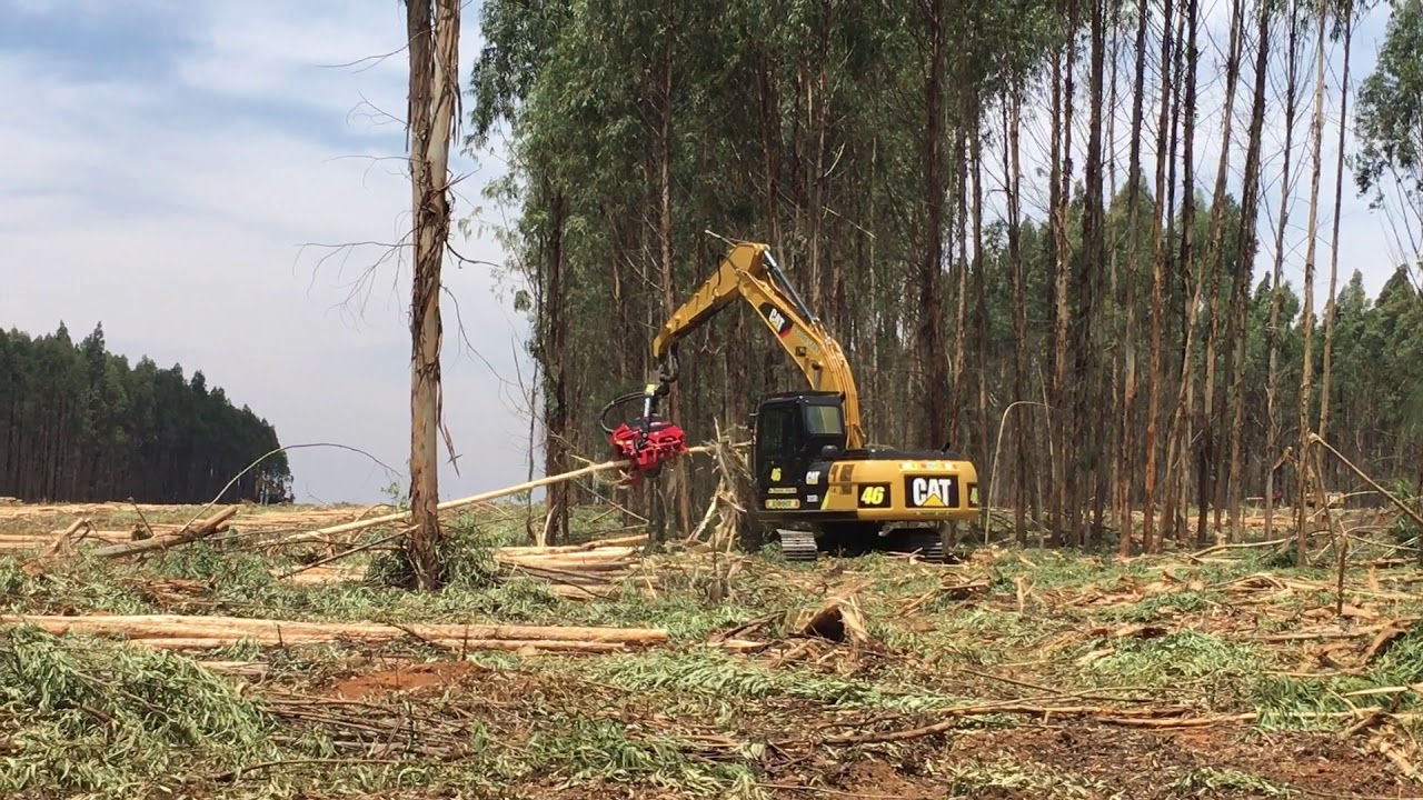 Operations - Forestry Plant and Equipment Sales