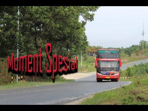 Bus Medan Lintas Timur Tiba Di pekanbaru