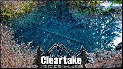 Clear Lake: The Underwater Forest, Oregon