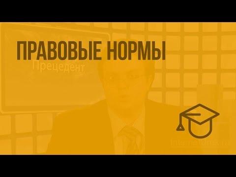 видео: Правовые нормы