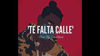 TE FALTA CALLE - Hip Hop instrumental Maleanteo (prod By:IduBeats)