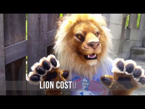 Realistic Lion Costume by Beetlecat Originals