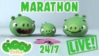 Piggy Tales Live Stream Marathon 24/7 🔴 | Angry Birds