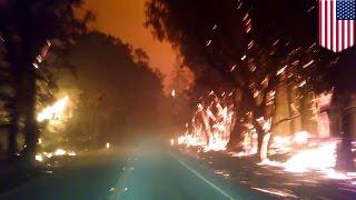 Incendies en Californie : il risque sa vie dans un feu de forêt près de Cobb Mountain