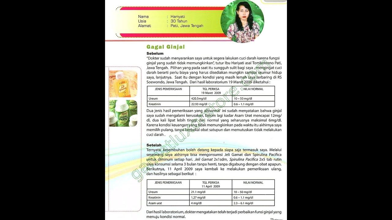 Cara Mengobati Pasien Penyakit Ginjal Kronis (PGK ...
