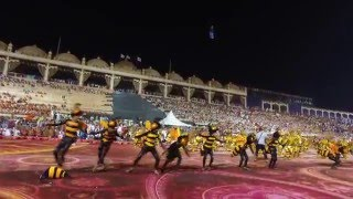 philippines buyogan bee dance in world culture festival india