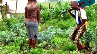 How Zulu man approach Zulu virgin girl || Short Film || Zulu Movie