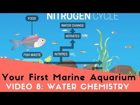 How To Set Up Your First Marine Aquarium, Video 8: Nitrogen Cycle, RO/DI, Saltwater, and Test Kits