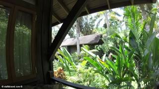 Treetop Deluxe room Review and Tour at Sunset at the Palms All-Inclusive Resort