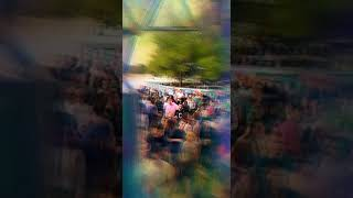 Dimensions Festival 2017 afterparty @ BAZA beach bar
