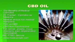 management of pain how your posture cbd can save your life