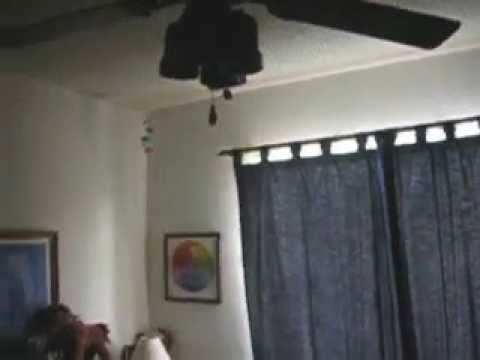 Ceiling Fans In My House Old Videos 5th Anniversary