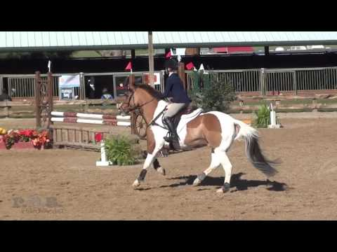 Ava Leslie & Saturday Afternoon  Texas Rose Horse Park Fall Horse Trials 2015