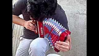 tavo garcia solo de puya con un acordeon de juguete