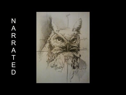 Drawing An OWL Easy Tutorial Graphite Pencil HB And 7B