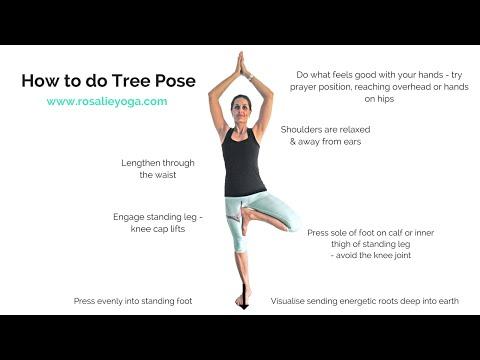 Beginners Yoga: How to do Tree Pose