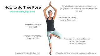 Beginners Yoga: How to do Tree Pose