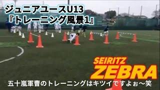 【成立ゼブラ/フットボールクラブ】2015年3月8日ジュニアユースU13『トレーニング風景1』